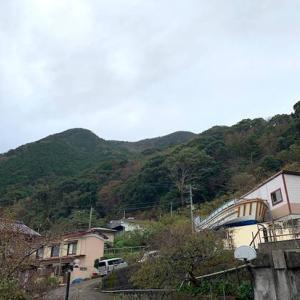 おはようございます 文化の日 小雨の朝になりました