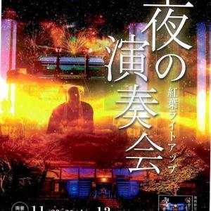 仏様のパワー全開 夜の演奏会 来週11月23日より 再公演 ライトアップも