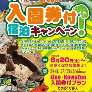 「ジャパンレプタイルズショー2020 夏レプ」開催 8月1日ツインメッセ静岡