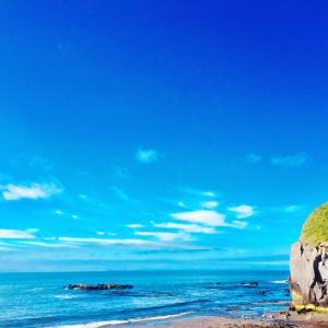 今年もハマナスそして北海道の初夏