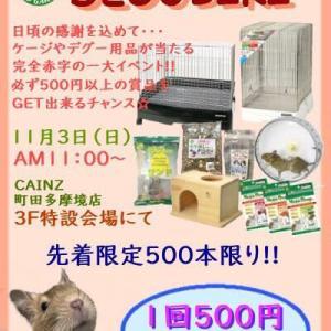 ●DEGUBIKIまで…あと一週間(^^)●