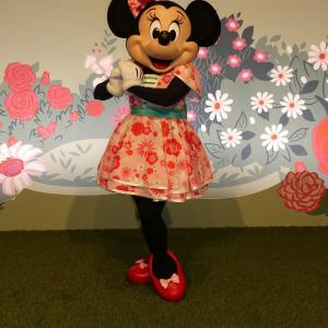 【48】イベントコスの可愛いミニー♡/Minnie's Garden Party