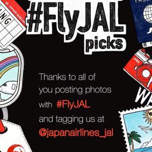 JALに私の写真を載せて頂きました