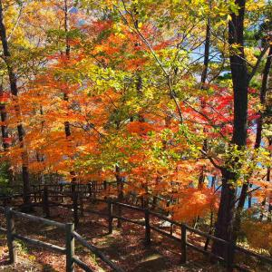 autunno 秋