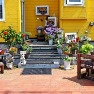 黄色い壁にお花が映える♪ご夫婦で楽しむ末広東Sさん*おらが街の素敵なお庭2020(旭川市)