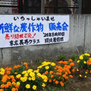 野菜の販売会大盛況でした♪末広長寿クラブ(旭川市末広東)