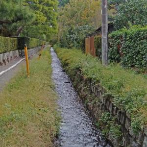 台風の最中、京都二泊三日の旅