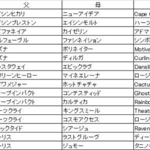第10回楽燕カップ ドラフト回顧〜達磨編〜