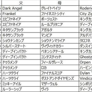 第11回楽燕カップ ドラフト回顧〜スワロウテイル編〜