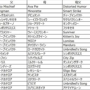 第11回楽燕カップ(2部) ドラフト回顧〜浮草編〜