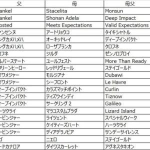 第11回楽燕カップ(2部) ドラフト回顧〜M-GALE編〜