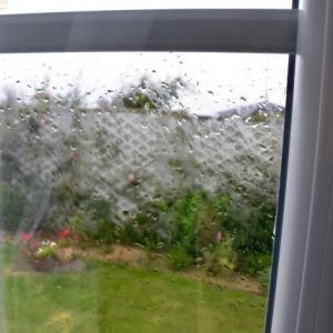 雨でだらだら