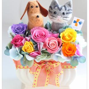 ◆動物病院の開院祝いに羊毛フェルトの犬猫入りプリザーブドフラワーアレンジメント