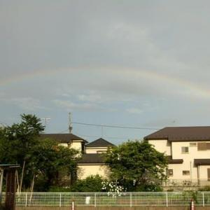 虹と花と空姉さん (Rainbow and Flower and SORA )