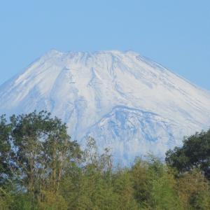 空晴れて初冠雪の富士の山photo五・七・五「調」