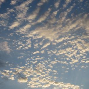 大寒に何か気になる鰯雲photo五・七・五「調」