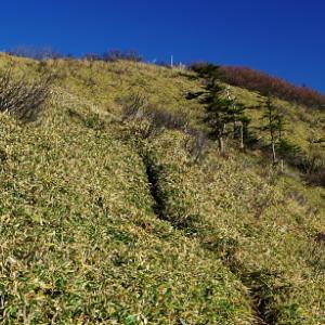 縦走路は秋と冬の境界線: 徳島矢筈山その1