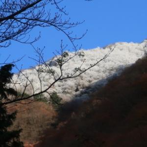 思いがけずシーズン初の雪山登山: 富栄山その1