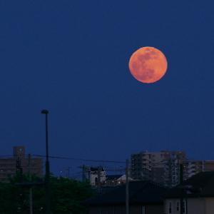 26日はスパームーンの皆既月食