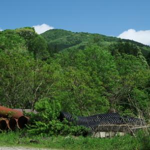規模・美しさ共に県下一のブナ林かも:  笠杖山その1