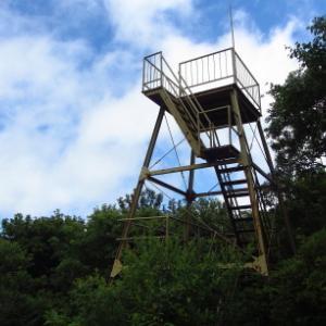 7月なのにひんやり涼しい気温15度:  朝鍋鷲ヶ山その2
