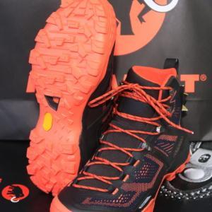 ど派手な靴を買っちまった: マムート デュカン ハイ GTX