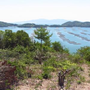 誰も知らない岬への道: 大平山その2