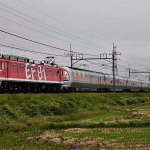 EF8195牽引・8009レ「カシオペア紀行 青森号」~ヒガハス&ワシクリにて