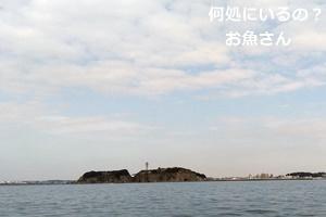 江の島沖、アマダイ釣り