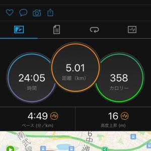 東京マラソン一般参加中止・・・そんな・・・・