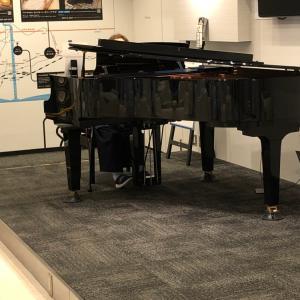 ハラミちゃん ピアノ