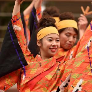 和歌山move 第10回よさこい大阪大会