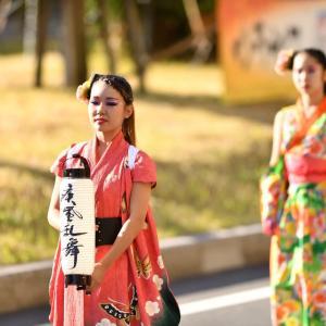 疾風乱舞 ウラヤスフェスティバル2019