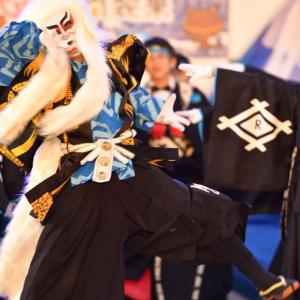 REDA舞神楽 第16回黒潮よさこい祭り