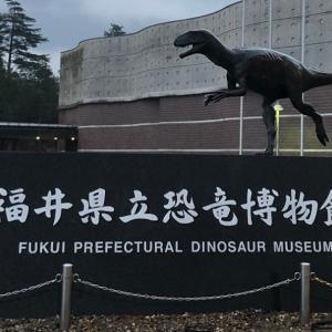 2020年 初・恐竜【写真】
