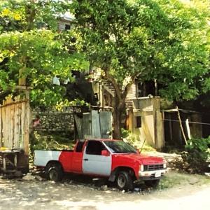 写真で見る20年前のジャマイカ