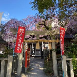 2020 京都の桜♪水火八幡宮・六角堂などなど