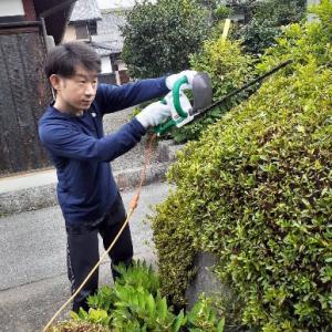 庭師になる( ^ω^ )