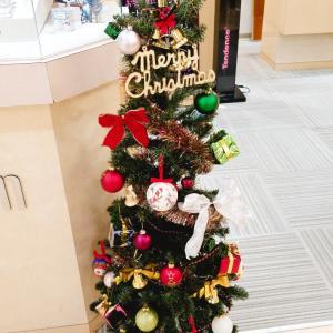 今年も飾りました!クリスマスツリーの完成です!