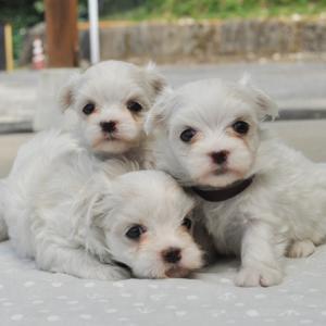 美人3姉妹です♪