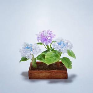 ヤフオク紫陽花