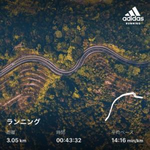 神田川ジョギング