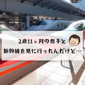【2歳11ヶ月】新幹線を見に行ってきた!今でも重宝してる育児グッズ。