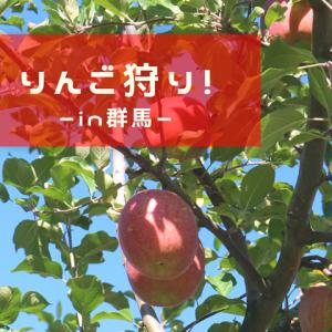 【群馬記】初めての「りんご狩り」!夢の丸かじり体験をしました~