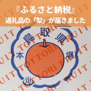 果汁で溺れそう~!鳥取県の「王秋梨」が美味しい!!【ふるさと納税】