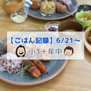 家庭菜園のきゅうりとピーマンを初収穫!【ごはん記録6/21~】