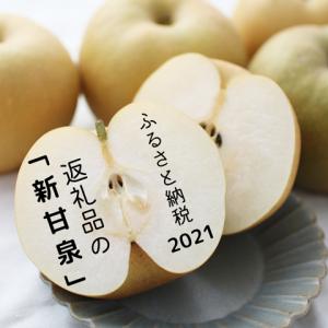 インフルエンザワクチン予約完了と【ふるさと納税】「新甘泉」をリベンジ!