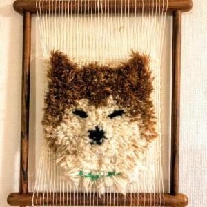 11月27日から作品展…愛犬織って展示します