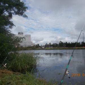 フナ釣りに行ったが・・・?