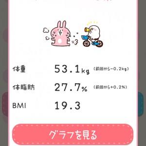 ダイエット1013日目 記録のみ